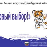В Оренбурге прошёл первый фестиваль боевых искусств
