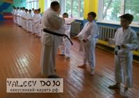 Гайская школа каратэ Валеев Долзё