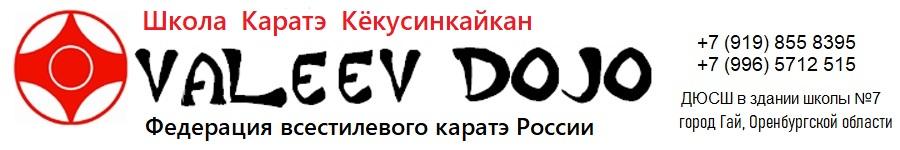 Валеев Додзё Logo
